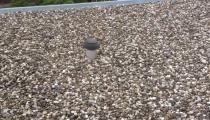 Verwijderen dakgrind en aanbrengen gemineraliseerde top laag